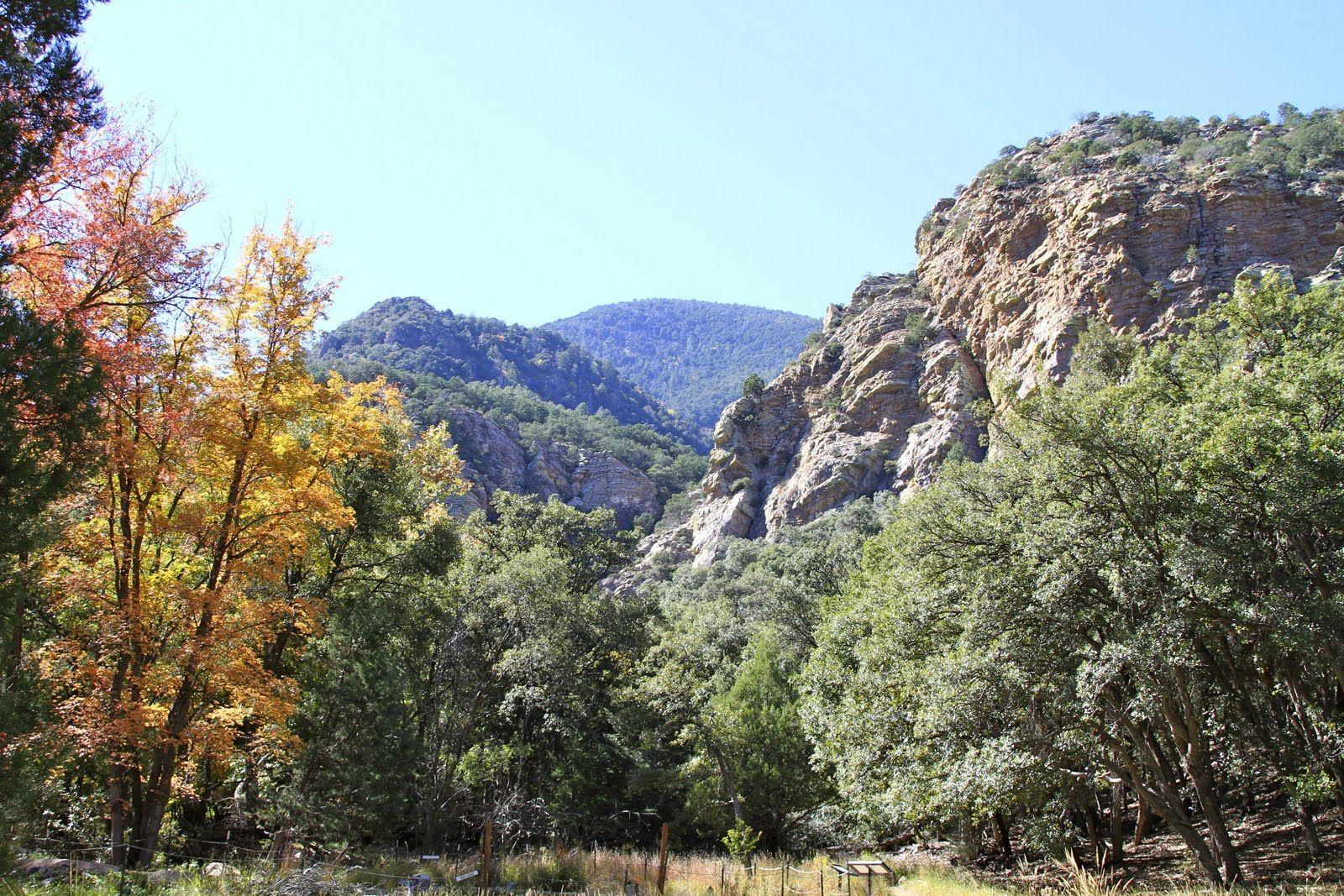 Sierra vista ups