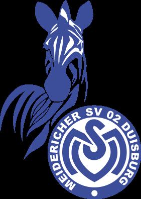 Msv Duisburg Msv Duisburg Duisburg Und Fortuna Dusseldorf