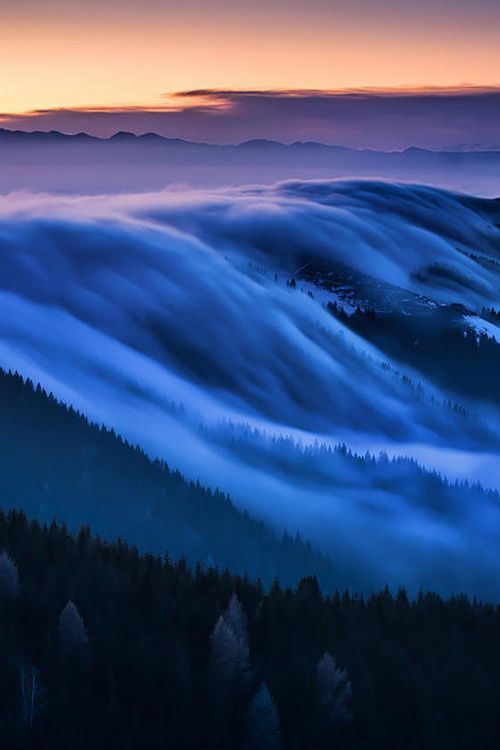Fog, monte grappa, V share moments