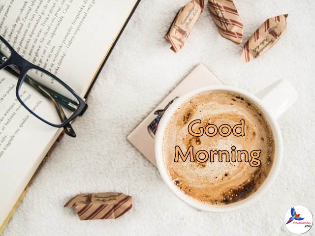 67 Free Good Morning Images Photo Wishes Download Hd Goodmorning Goodmorningpost Goodmorning Good Morning Images Free Good Morning Images Good Morning Post