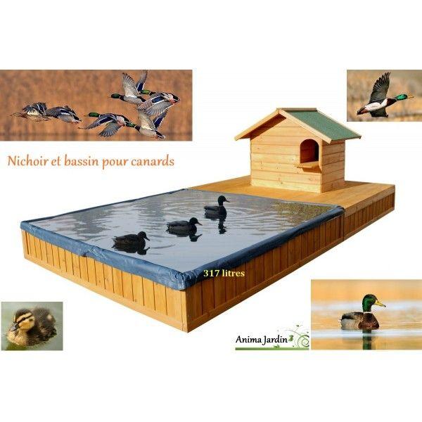 abri pour canard avec bassin special canard maison canard pas 600 600 poules. Black Bedroom Furniture Sets. Home Design Ideas