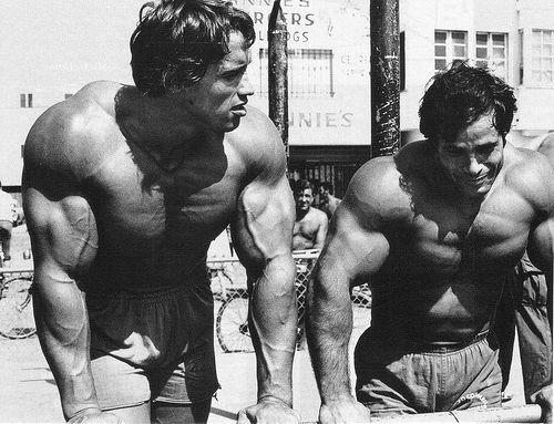 Venice Beach, Muscle Beach, Goldu0027s Gym, Bodybuilding, Arnold - new arnold blueprint app