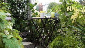 50 idées pour profiter de son balcon à l'abri des regards #kletterpflanzenwinterhart HOME & GARDEN: 50 idées pour profiter de son balcon à l'abri des regards #kletterpflanzenwinterhart 50 idées pour profiter de son balcon à l'abri des regards #kletterpflanzenwinterhart HOME & GARDEN: 50 idées pour profiter de son balcon à l'abri des regards #kletterpflanzenwinterhart