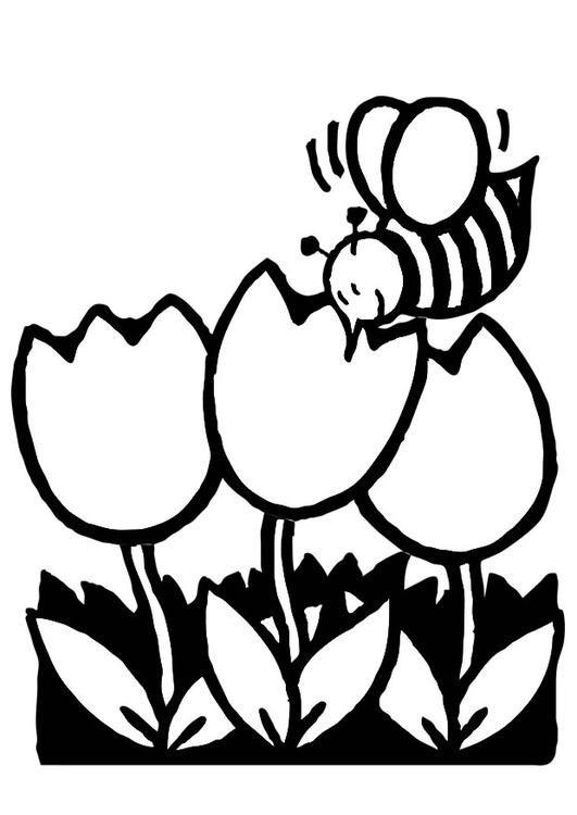 Dibujo para colorear tulipanes con abeja. Ilustración - Imágenes ...