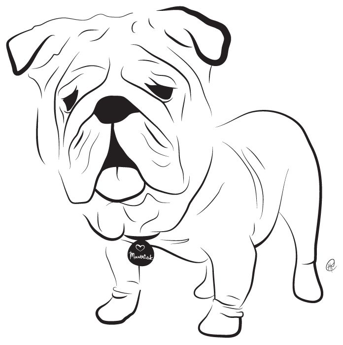 Bulldog -- Charity Pups raises awareness and dollars for a different animal-related non-profit each month through dog illustrations. www.charitypups.com #dog #illustration #cute #adorable #puppy #bulldog