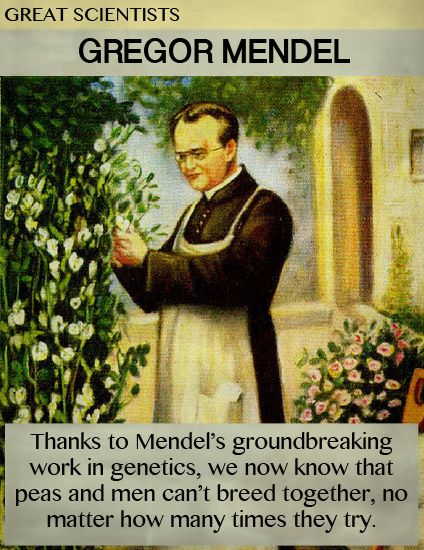 Great Scientists: Gregor Mendel | Science   And More | Funny