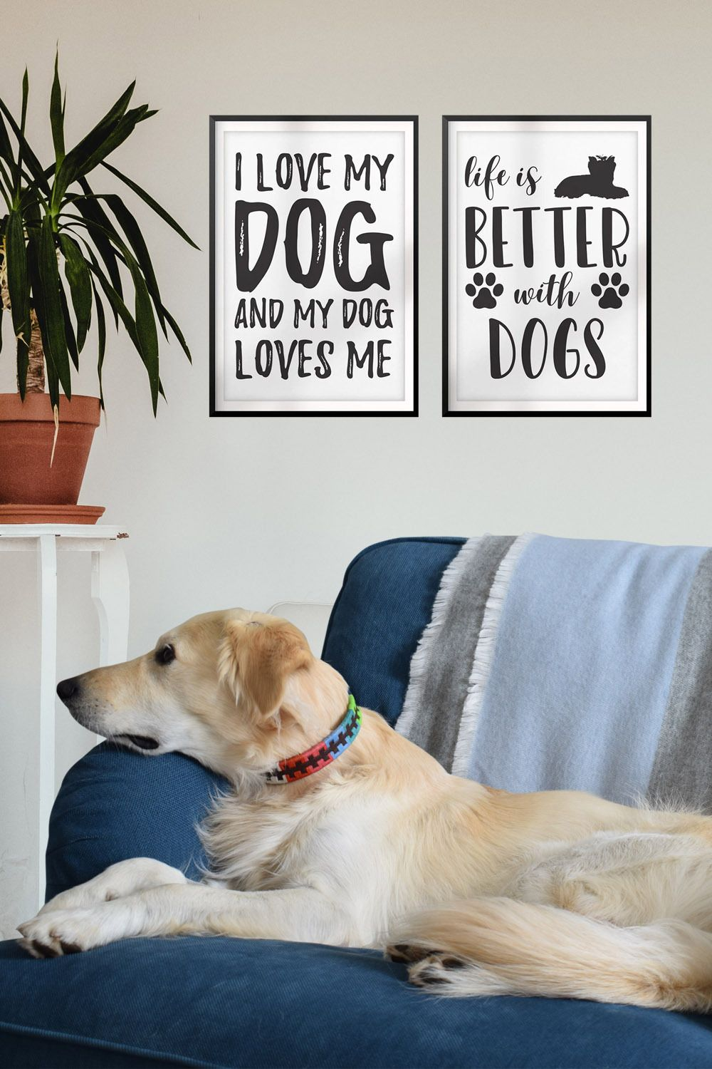 Pin On Pet Dog Collars And Leashes