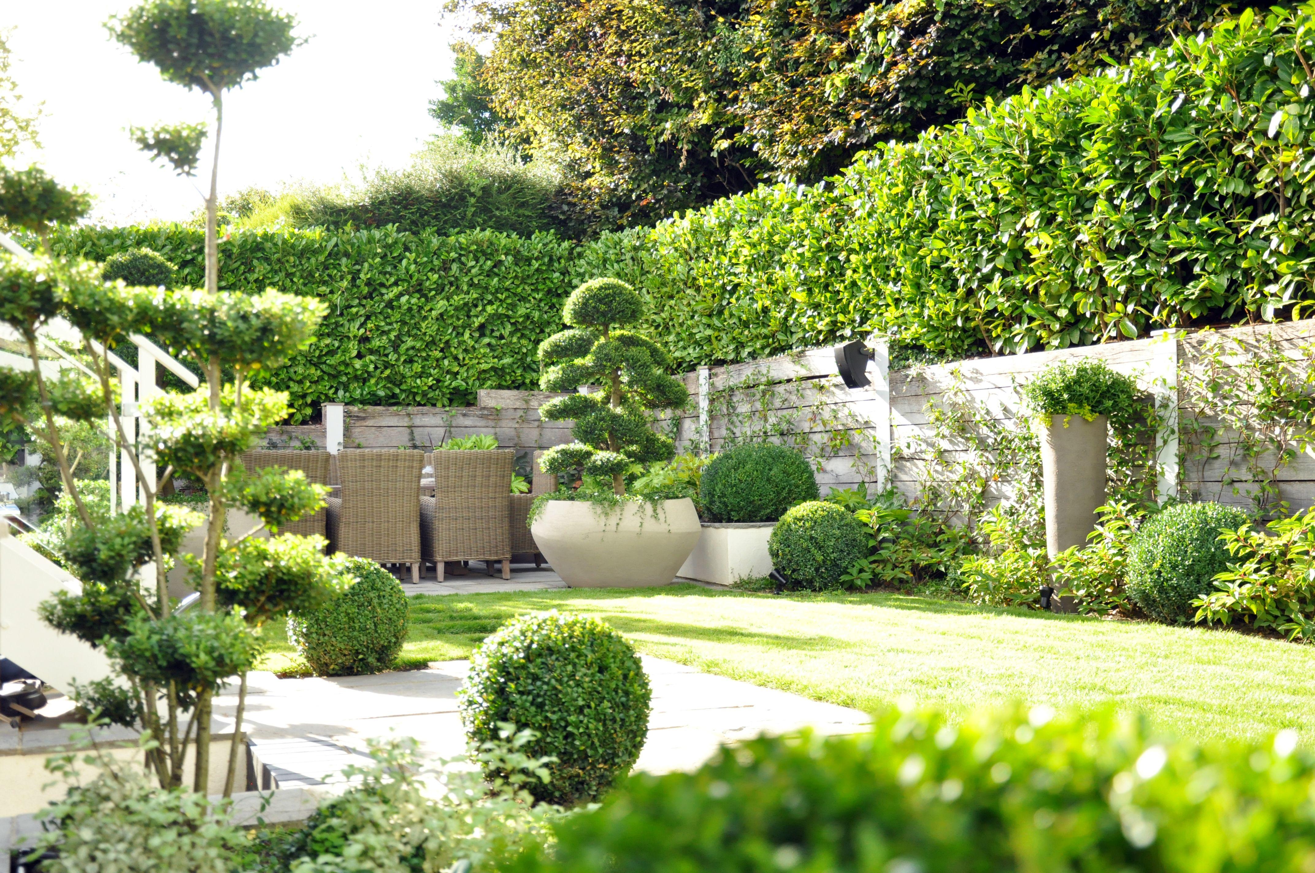 contemporary courtyard garden design london an organic but