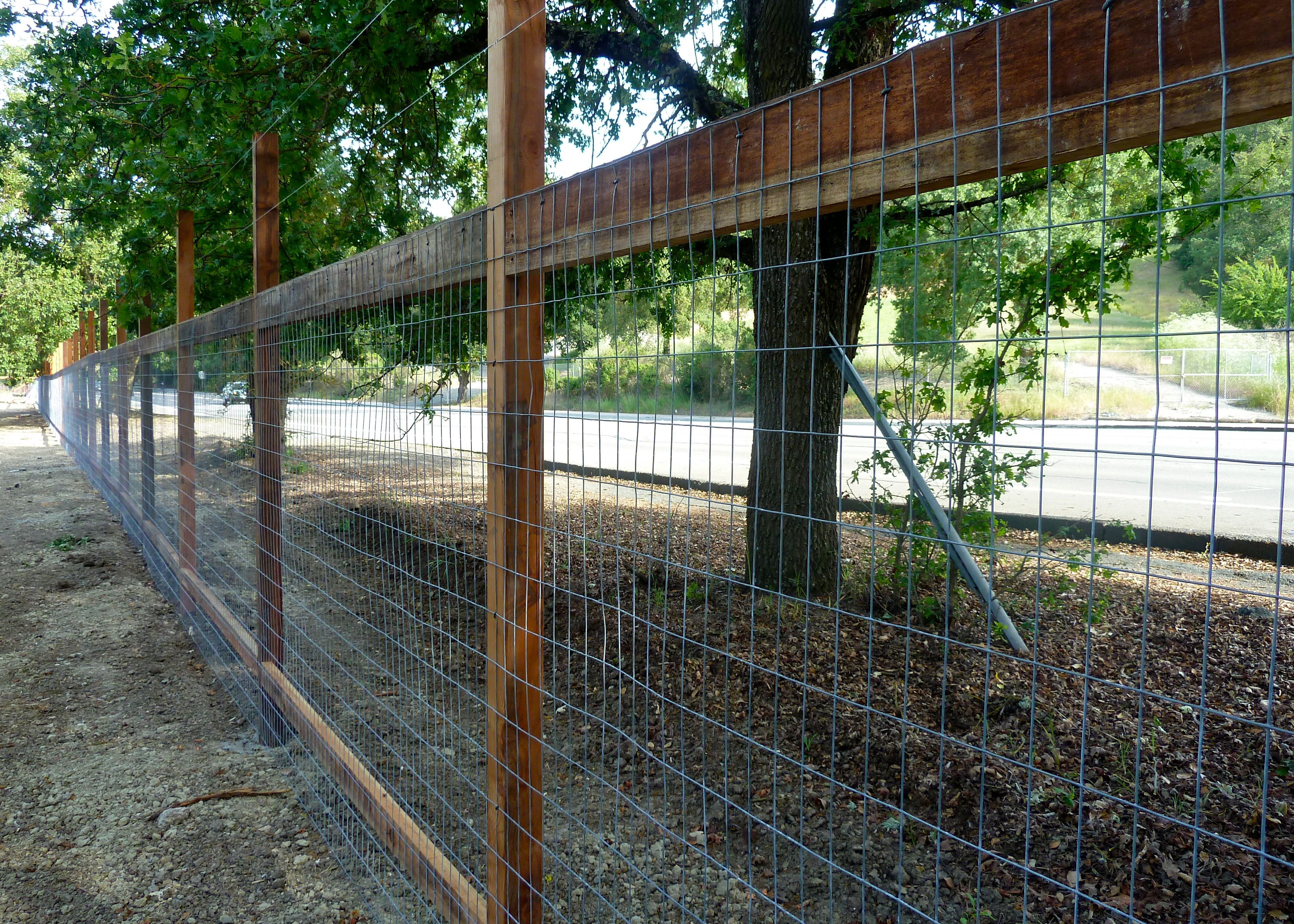 Deer Fencing For Gardens - Google Search