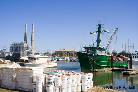 Moss Landing, California http://cheshirecatphoto.com/pages/blog/archives/15850