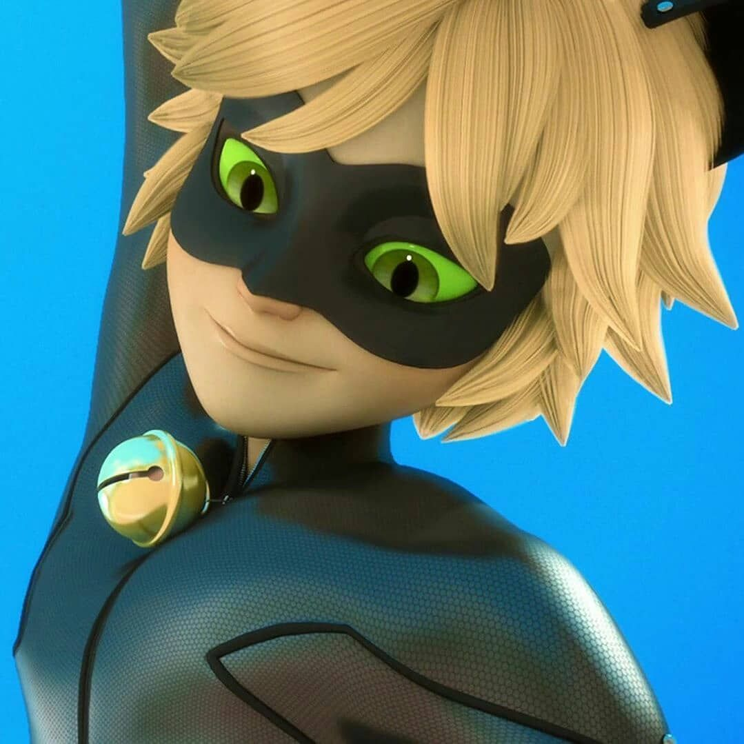 Miraclous Cat Noir On Instagram Hi I Am A Cat Noir And What Is Your Name Miraculous Ladybug Anime Miraculous Ladybug Comic Cat Noir Aesthetic