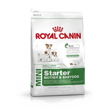 Royal Canin Mini Starter Dog Food 8 5kg Royal Canin Dog Food Dog Food Online Royal Canin