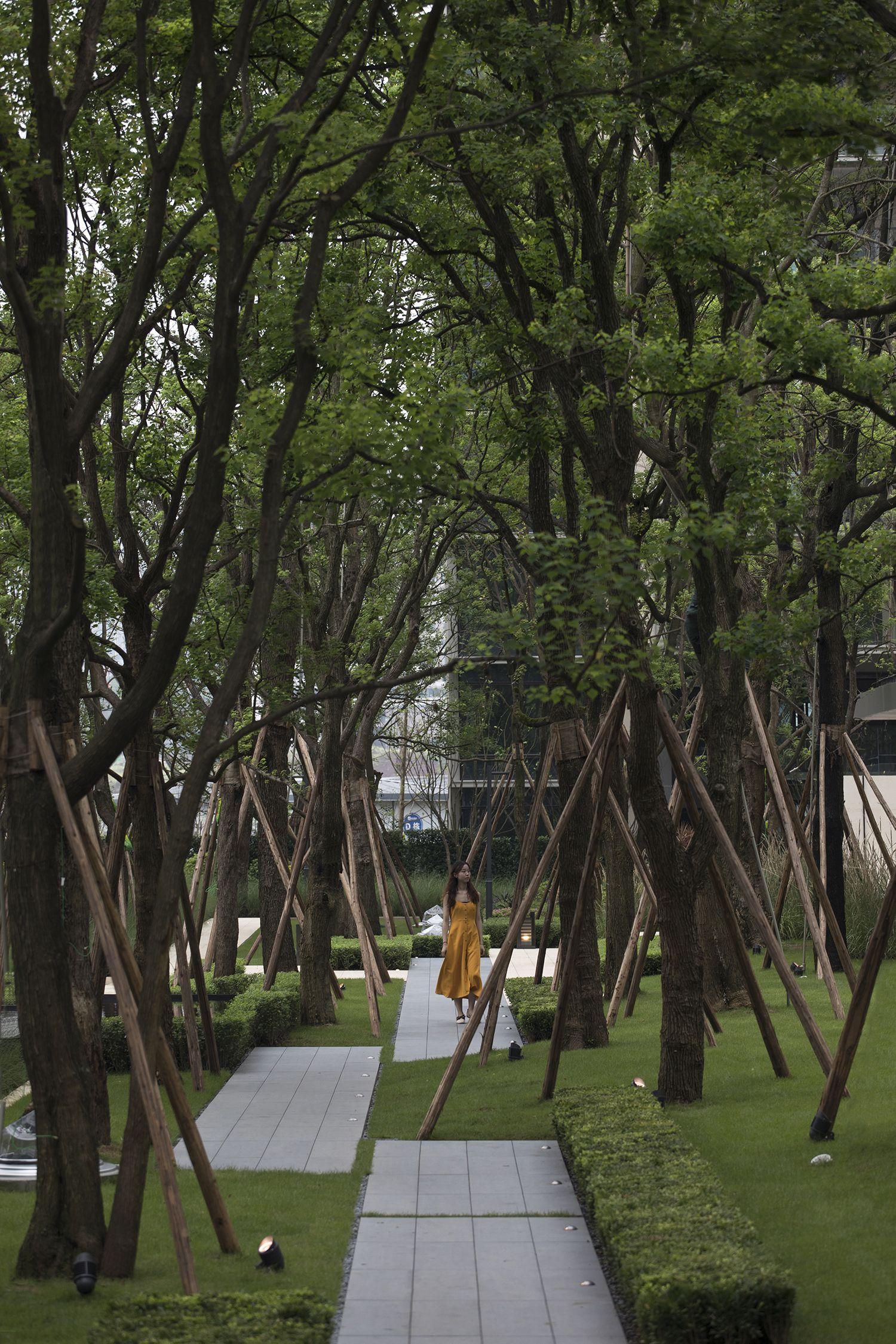 龙湖 尘林间 新加坡式的住宅景观 Jtl Studio Mooool木藕设计网