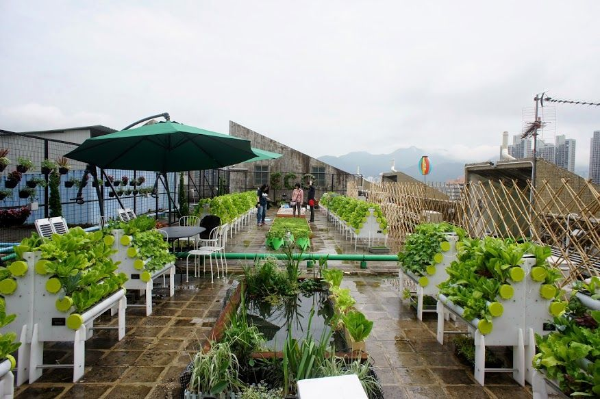 Hydropro Systems Installed At A Rooftop Garden In Hong Kong May 2014