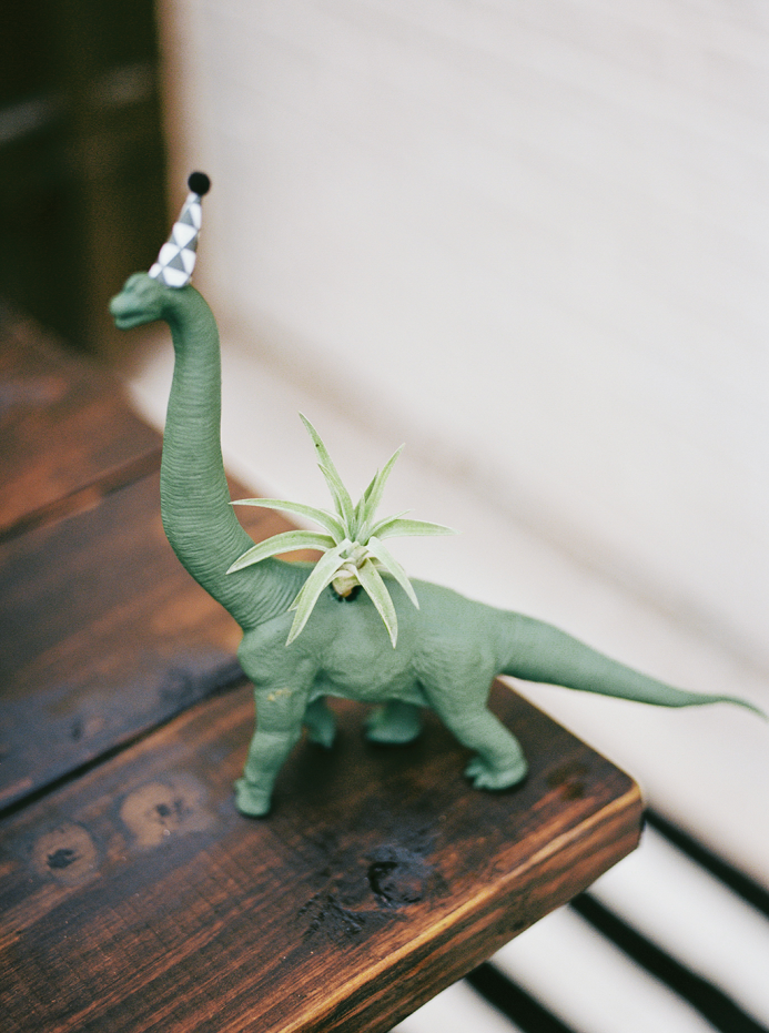 Phoenix's Second Birthday | Jennifer Laura Design » kristencurette dinosaur planter!