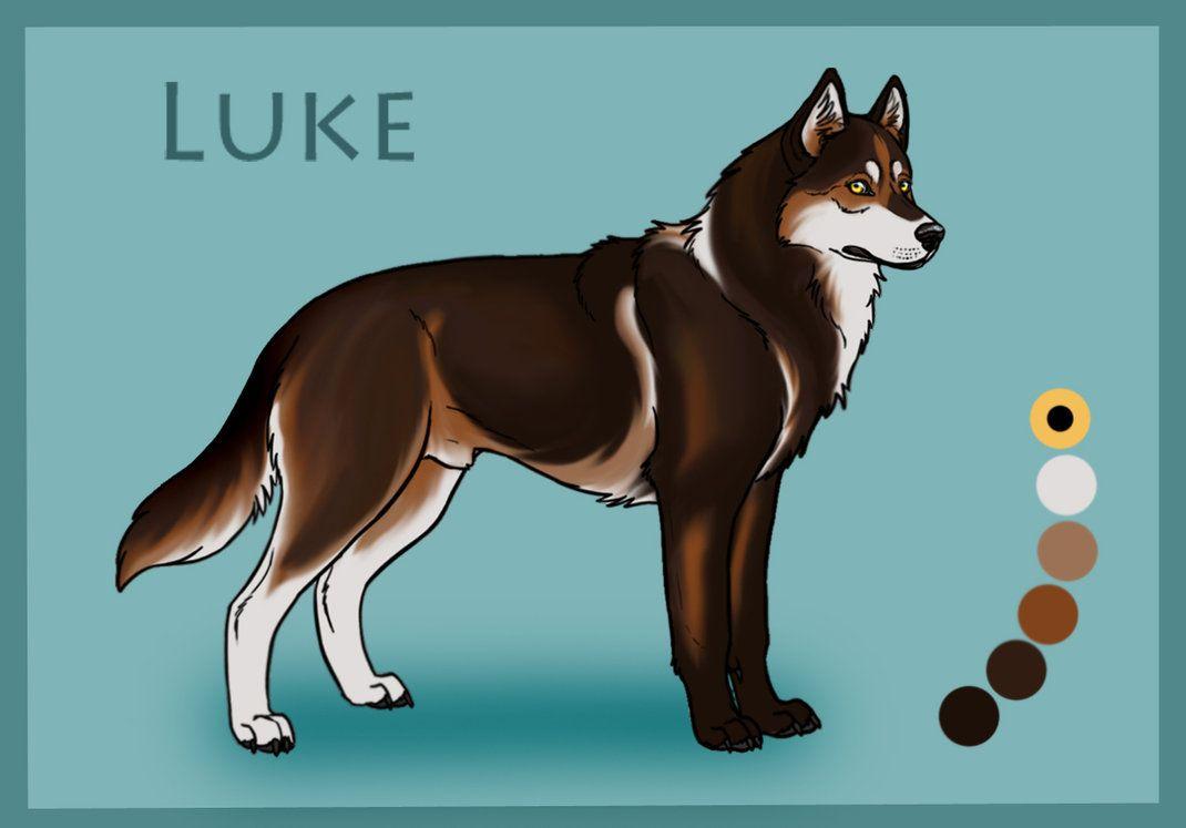 Luke Male Animated Animals Canine Drawing Animal Drawings
