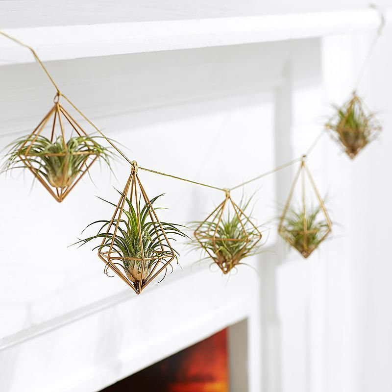 POTEY 604202 2 Pack Air Plants Holders Air Plant Wall Hanger for Tillandsia Home Decor Hanging Air Plant Holder Handmade Cotton Rope Air Plant Hanger 43.3//33.4,Black