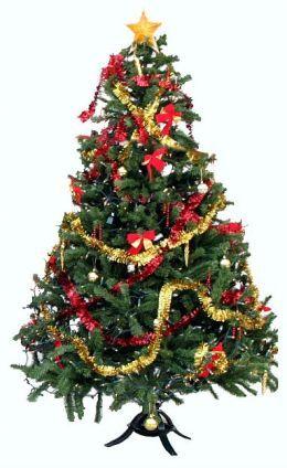Saturday Night Live (SNL) - The Killer Christmas Trees | Pinterest ...