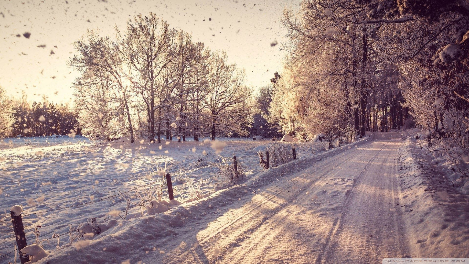 Wallpapers Hd World Winter Snow And Rain Winter Background Winter Wonderland Wallpaper Winter Scenery