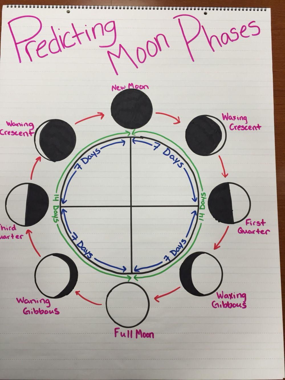 medium resolution of Predicting Moon Phases Anchor Chart   Anchor charts
