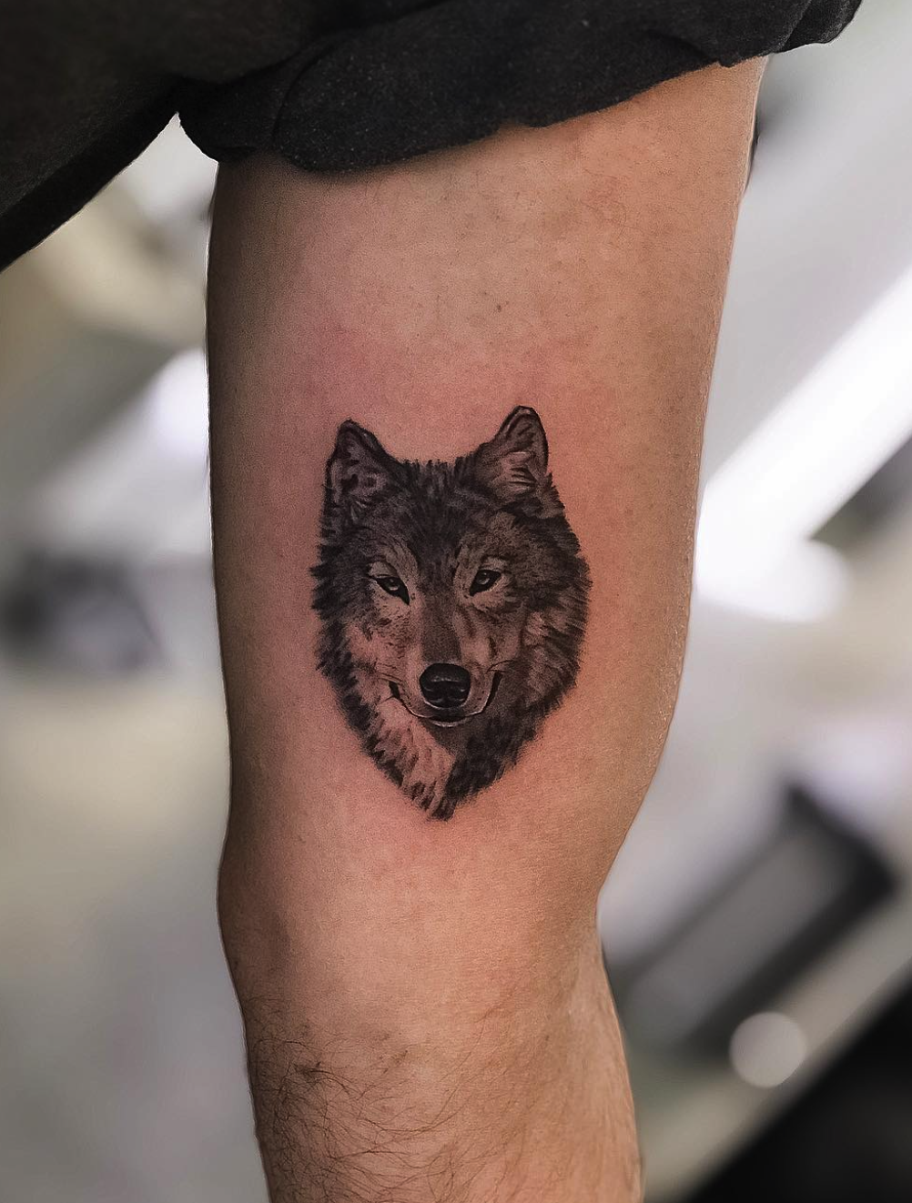 Small Wolf Tattoo Small Wolf Tattoo Wolf Tattoos Small Tattoos