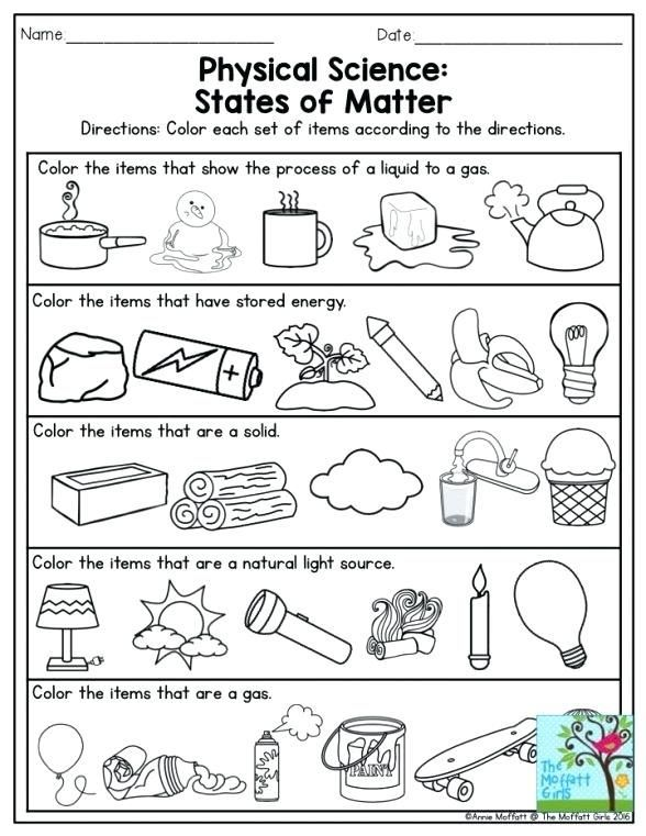 3rd grade, 4th grade Science Worksheets: Fly detective ... |Science Reasoning Worksheets 2nd Grade