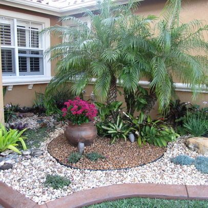 Landscape palm tree Design Ideas, Pictures, Remodel and ... on Palm Tree Backyard Ideas id=59406