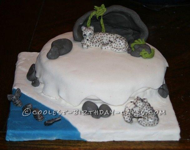 Baby Snow Leopard Birthday Cake Cool Cakes Amazing