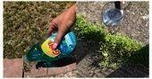 zeigt einen einfachen Trick mit dem sich Unkraut schnell günstig und effektiv e Ein Gärtner zeigt einen einfachen Trick mit dem sich Unkraut schnell günsti...
