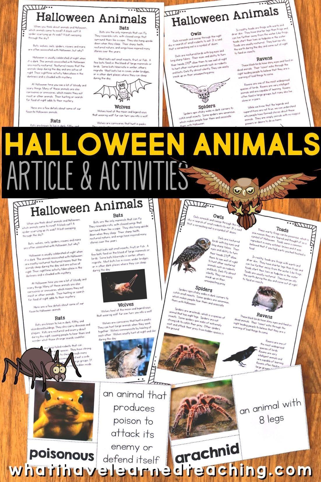 Halloween Animal Articles Halloween Classroom Activities Student Activities Halloween Reading Comprehension [ 1653 x 1102 Pixel ]