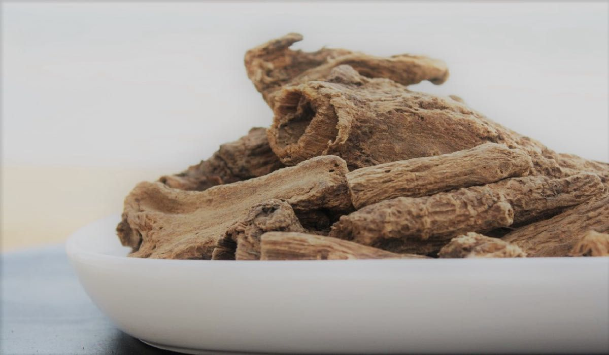 فوائد القسط الهندي للحامل Food Peanut