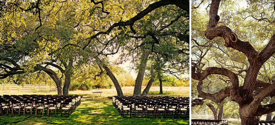 43 vineyards at chappell lodge austin texas wedding
