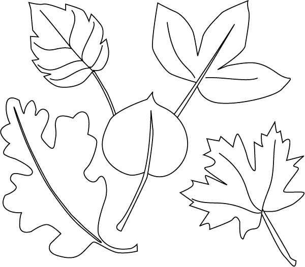 disegni da colorare foglie autunno