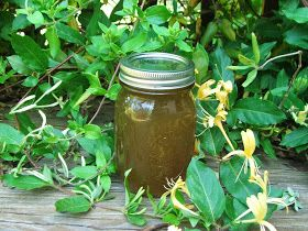 Canning Granny: Wild Honeysuckle Syrup