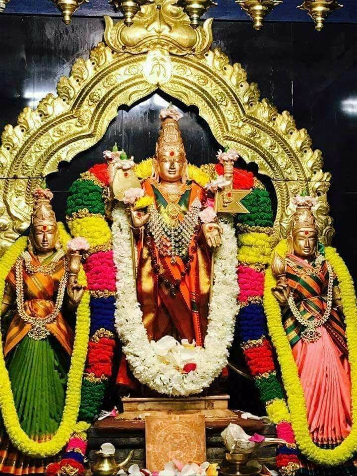Pin by Preetha Suresh on Lord muruga (With images) Lord