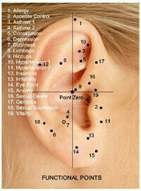 Accupuncture piercing points and their health benefits note has to be pierced very specifically differs from person in placement amount of also best ear acupressure images acupuncture rh pinterest