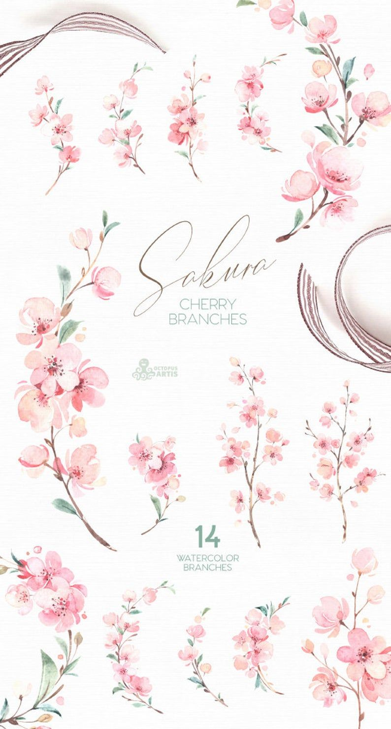 Sakura. Cherry Branches. Watercolor Floral clipart, fresh, pink, flowers, spring, wedding, bridal, twig, delicate, gentle, garden, girls