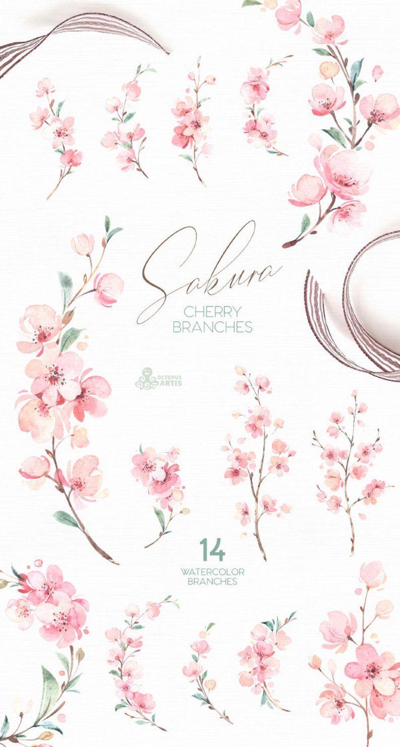 Sakura. Cherry Branches. Watercolor Floral clipart, fresh, pink, flowers, spring, wedding, bridal, twig, delicate, gentle, garden, girls