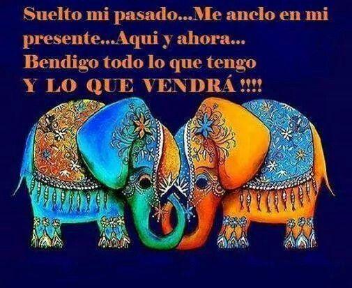 Elefantes De La Suerte Frases De Agradecimiento Elefantes Viejitos