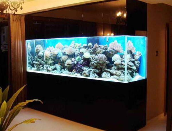 Top 7 aquarium designs for your interior design interiordesign top 7 aquarium designs for your interior design interiordesign fishtank aquarium voltagebd Images