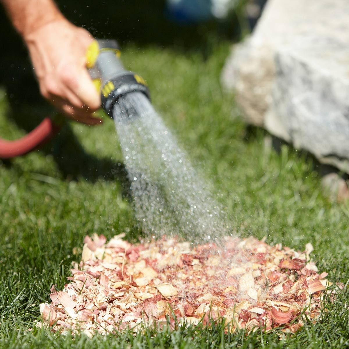 spot-watering tip for grass seed | handy information | grass