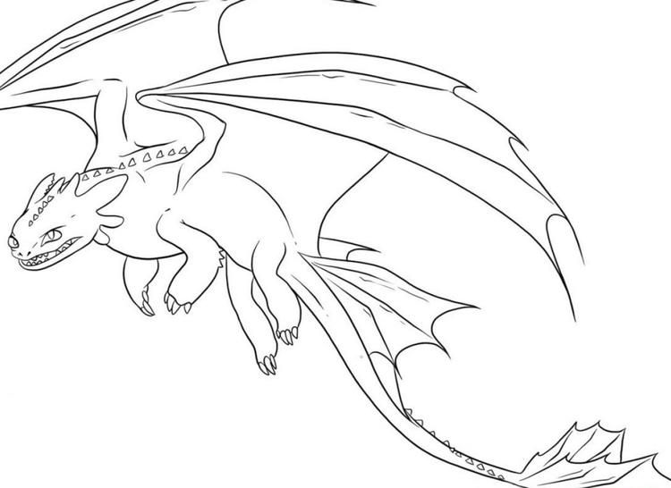 Night Fury Flying Dragon Coloring Pages Fotos De Dragao Dragoes