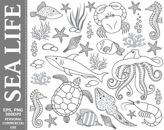 Digital Sea Life Clip Art Underwater Fish Crab Octopus Etsy Turtle Images Clip Art Underwater Fish