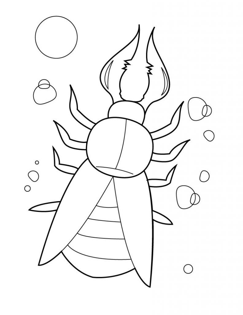 Tremendous Colouring Pages Insects Insect Coloring Pages Coloring Pages Bug Coloring Pages [ 1336 x 1800 Pixel ]
