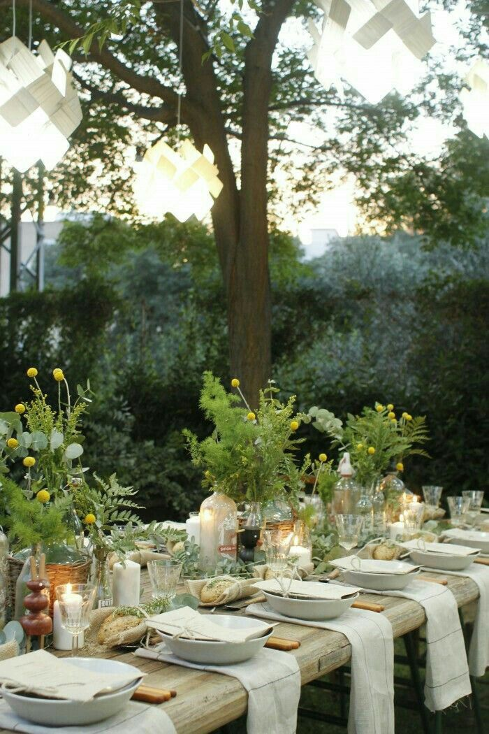Outdoor Dinner Party. Outdoor Table SettingsLunch ...