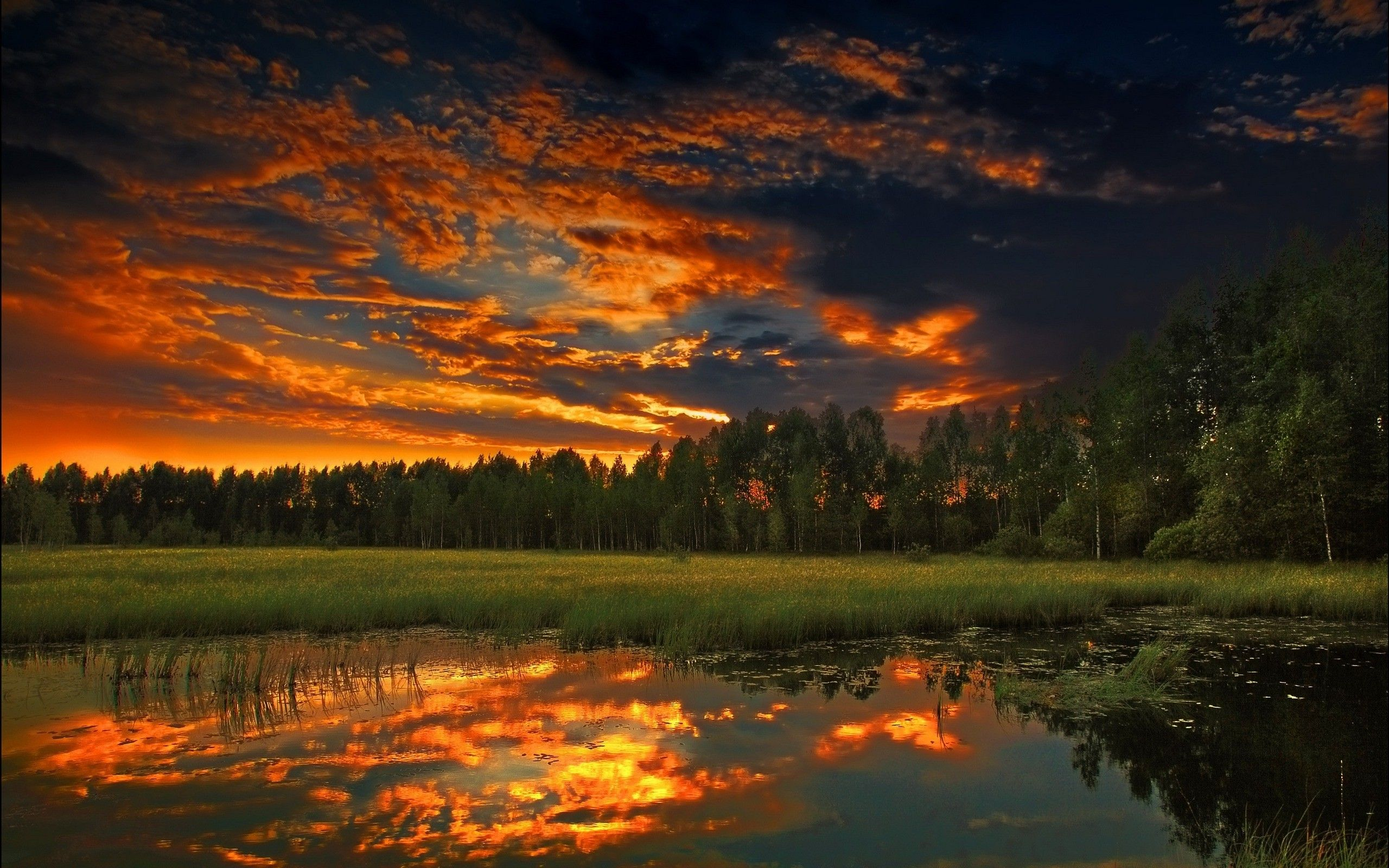 Sunset night sky sunset clouds landscapes nature forest - Cool night nature backgrounds ...
