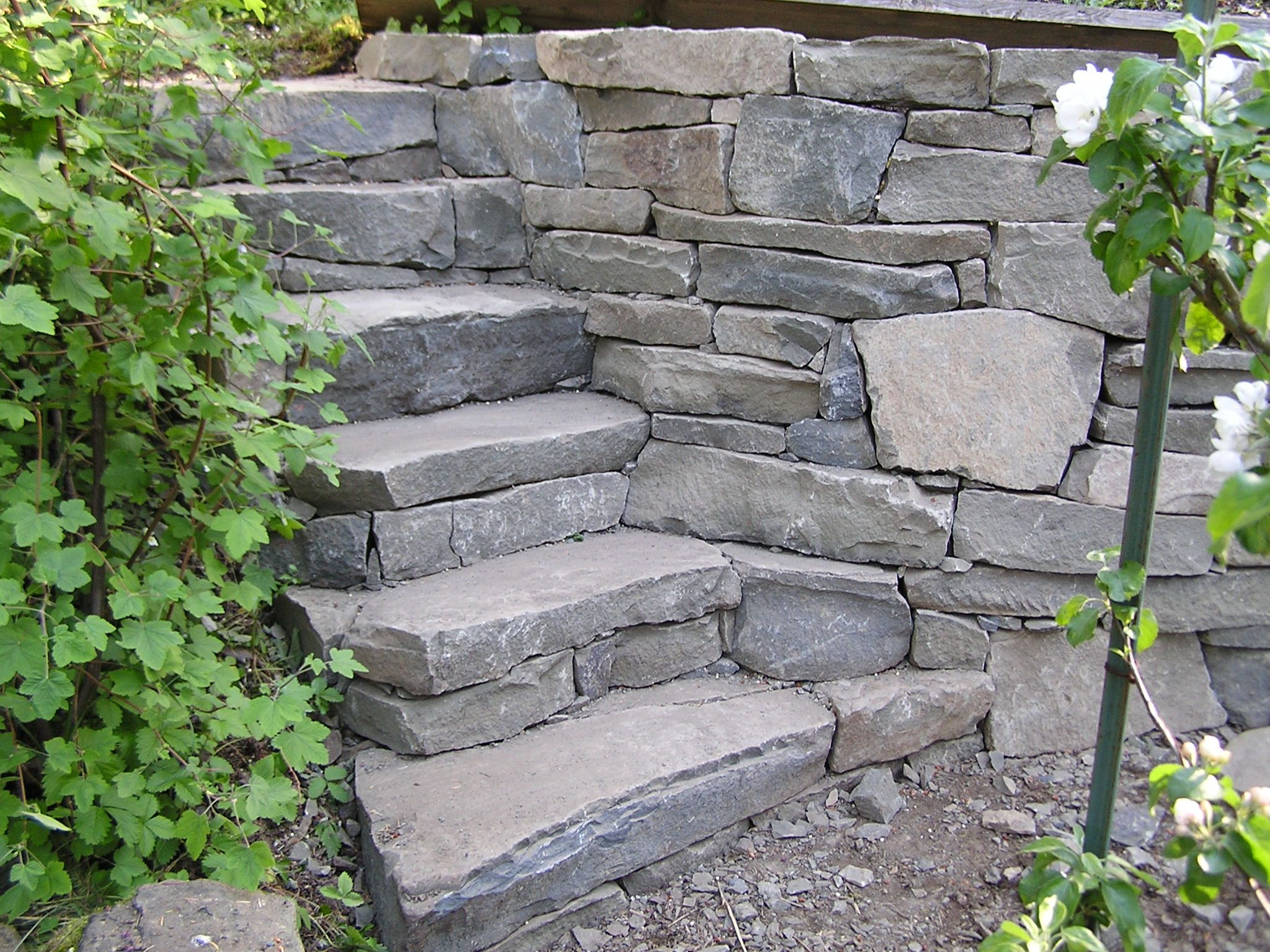 The natural stone steps of a stairway garden feature climb a small - Garden Steps Garden Bed Above The Existing Garden Into A Stoney Hillside The Steps