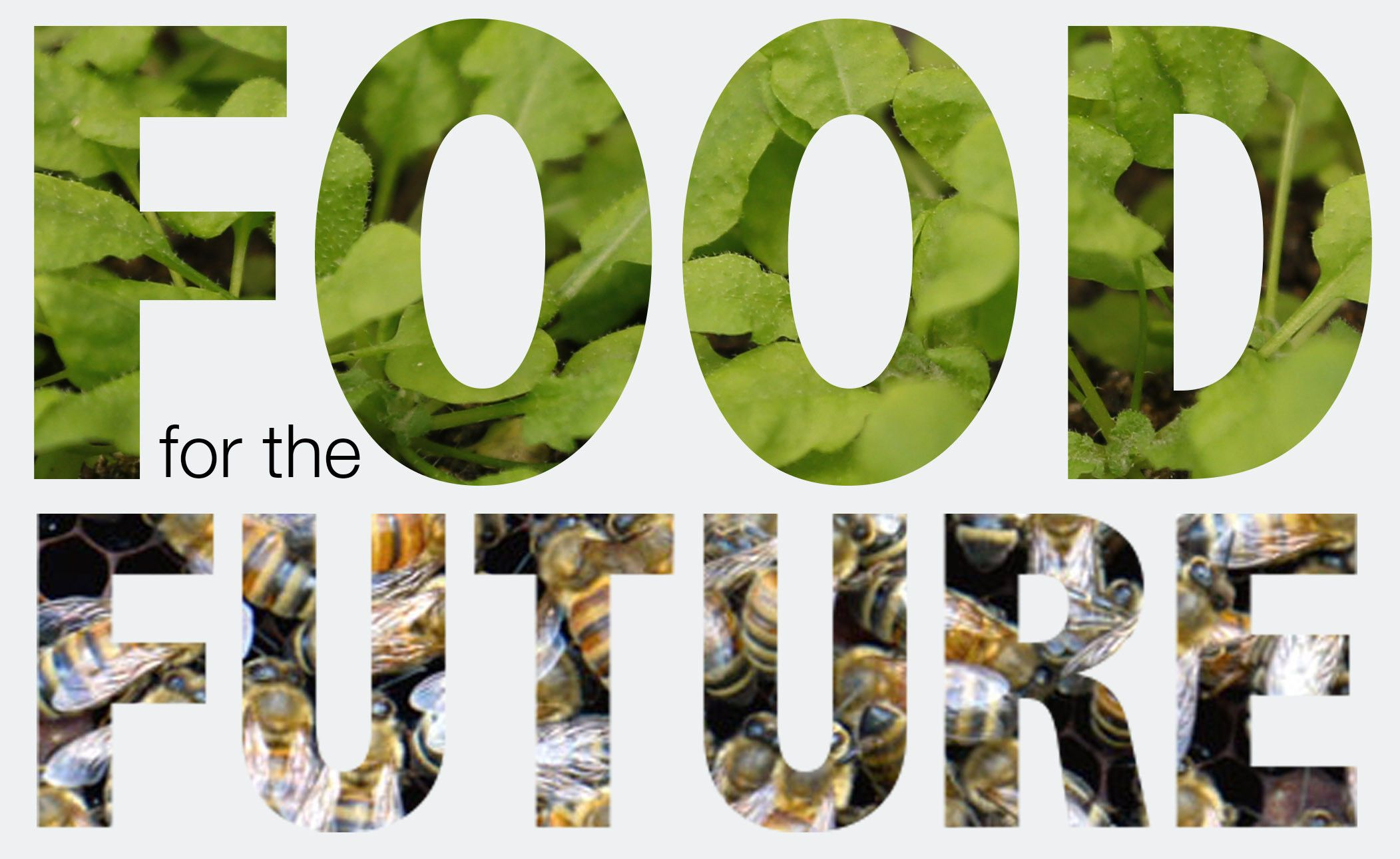 future of food Our 9th annual food conference, the future of food, dives into the dramatic  changes affecting the food industry such as the amazon effect and the main.