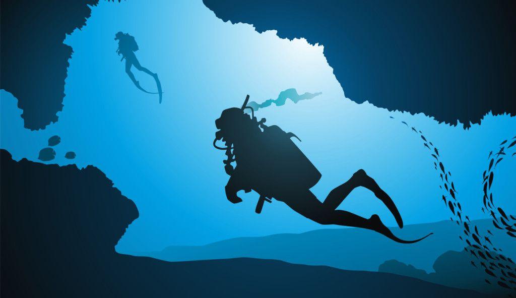 The Scuba Diver S Ideal Body Scuba Diver Life In 2020 Underwater World Underwater Photos Scuba