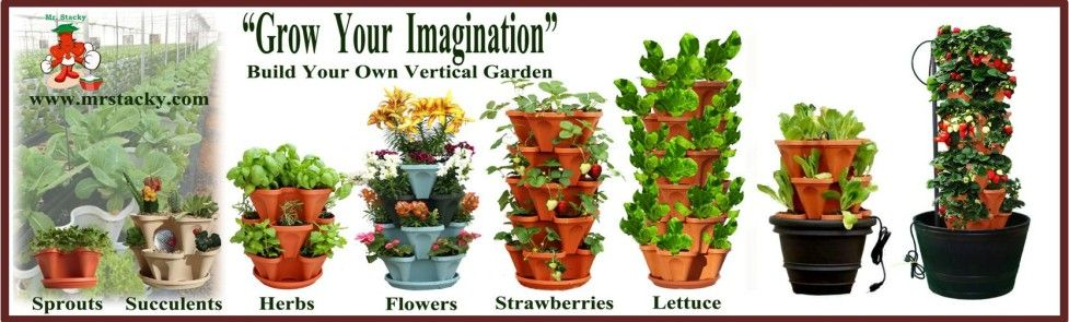 Best Way To Grow Strawberries In Containers Hydroponic Vertical Gardening Planters Square Foot Gardening mercial Growing Systems Hig